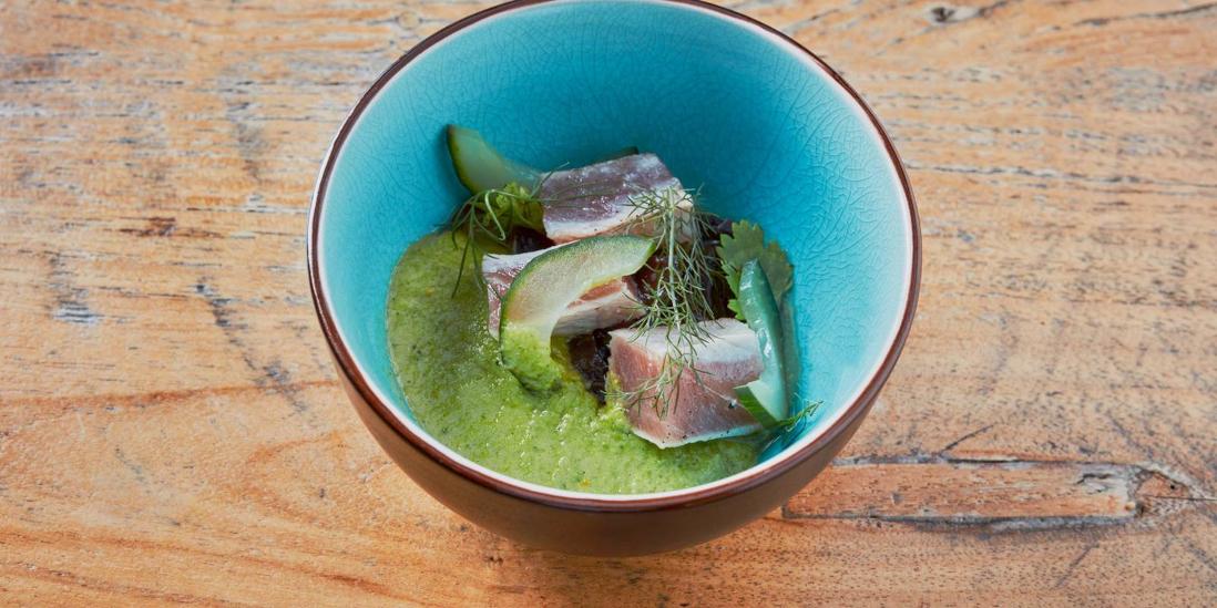 Okurkové gazpacho, tuňák v pepři a mořské řasy v yuzu